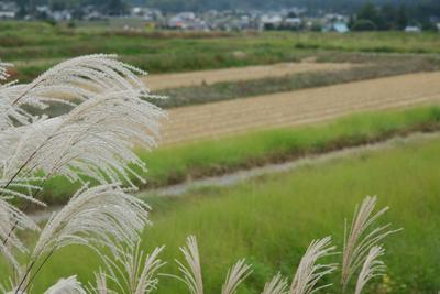 AZUMINO_20081012_2.jpg