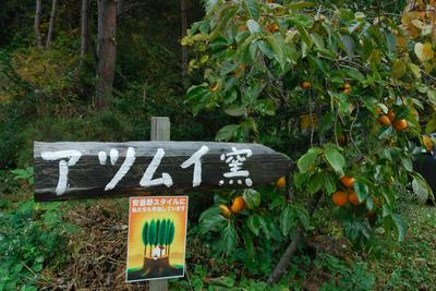 AZUMINO_20081103_16.jpg