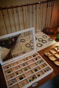 AZUMINO_20081103_6.jpg