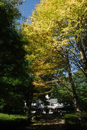 AZUMINO_20091013_1.jpg
