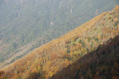 AZUMINO_20091022_6.JPG