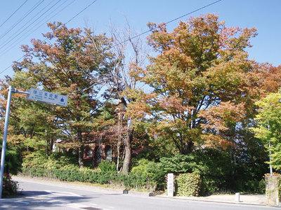 AZUMINO_20051021_1.jpg