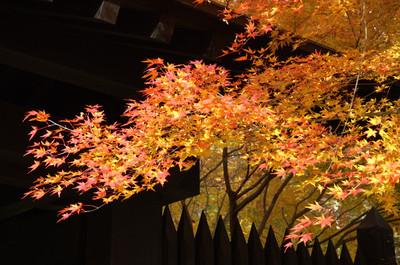 AZUMINO_20051111_2.jpg