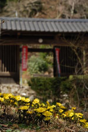 AZUMINO_20100321_1.JPG