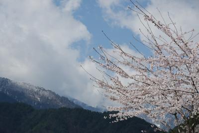 AZUMINO20100424_9.JPG