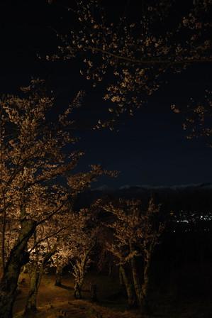 AZUMINO20100428_4.JPG