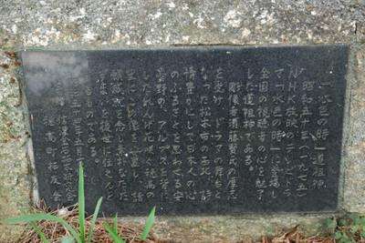 AZUMINO_20100812_2.JPG
