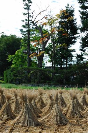 AZUMINO_20100918_10.JPG