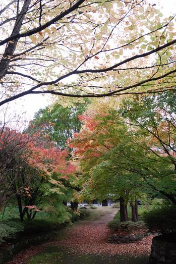 AZUMINO_20101031_1.JPG