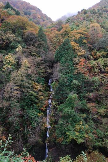 AZUMINO_20101031_4.JPG