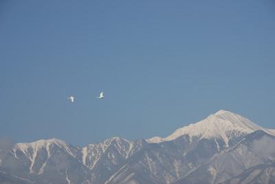 AZUMINO_20110221_2.JPG