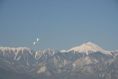 AZUMINO_20110223_4.JPG