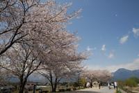 AZUMINO_20110424_18.JPG