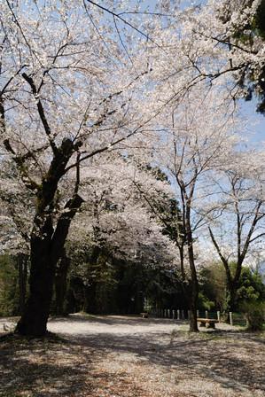 AZUMINO_20110424_19.JPG