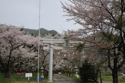 AZUMINO_20110502_2.JPG