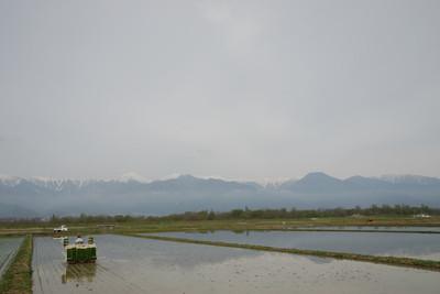 AZUMINO_20110505_2.JPG