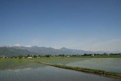 AZUMINO_20110515_1.JPG