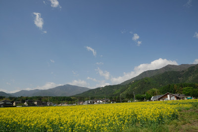 AZUMINO_20110515_5.JPG