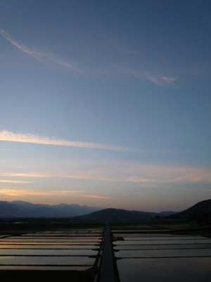 AZUMINO_20110524_3.JPG