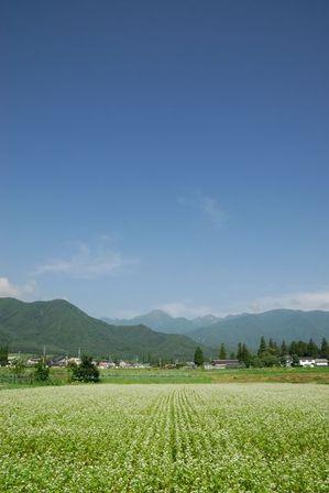 AZUMINO_20110706_5.JPG
