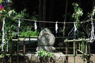 AZUMINO_20110807_1.JPG