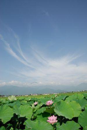 AZUMINO_20110812_1.JPG