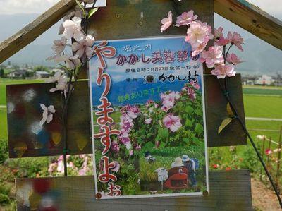 AZUMINO_20110812_17.JPG