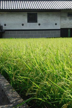 AZUMINO_20110830_2.JPG