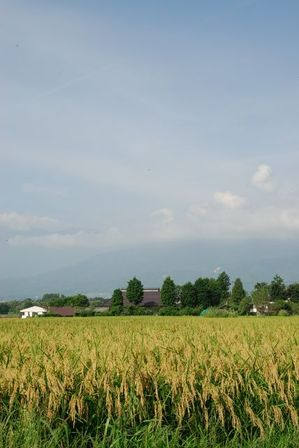AZUMINO_20110830_4.JPG