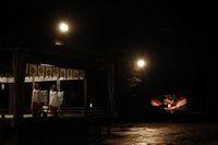 AZUMINO_20110903_2.JPG