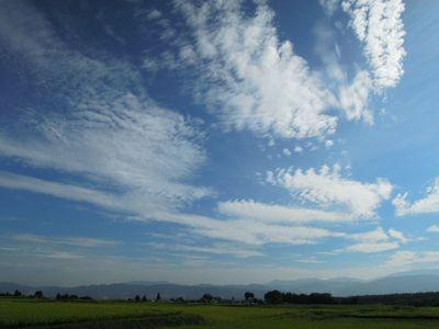 AZUMINO_20110908_2.JPG