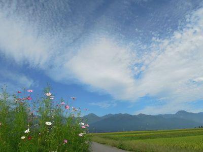 AZUMINO_20110908_5.JPG