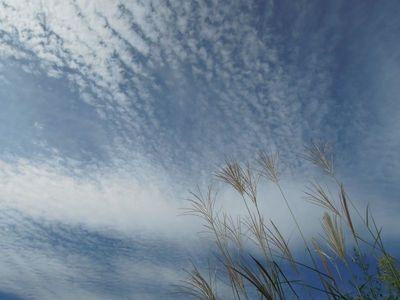 AZUMINO_20110908_7.JPG