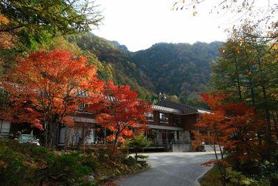 AZUMINO_20111017_2.JPG