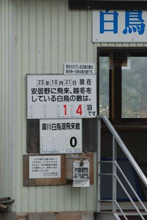 AZUMINO_20111021_3.JPG