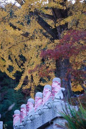 AZUMINO_20111027_1.JPG