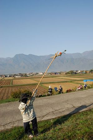 AZUMINO_20111028_10.JPG