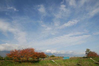 AZUMINO_20111109_1.JPG