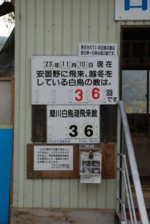 AZUMINO_20111110_2.JPG