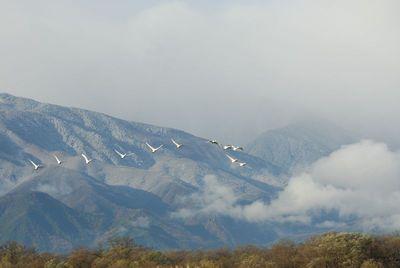AZUMINO_20111121_5.JPG