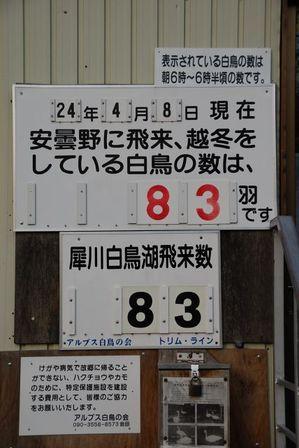AZUMINO_20120408_4.JPG