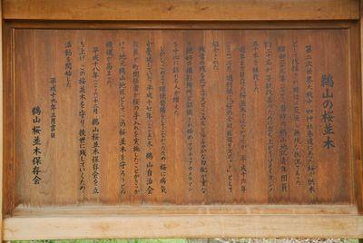AZUMINO_20120427_5.JPG