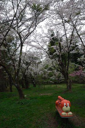 AZUMINO_20120430_4.JPG