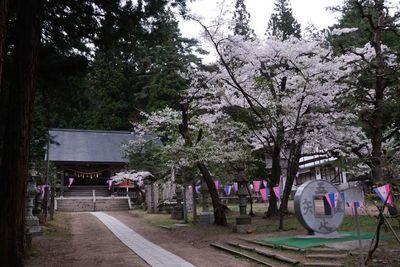 AZUMINO_20120430_5.JPG