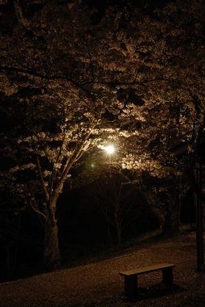 AZUMINO_20120501_10.JPG