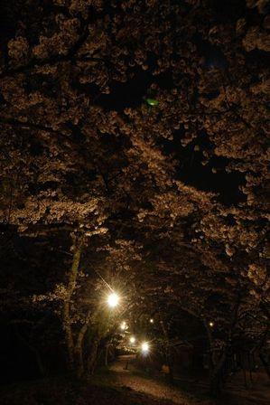AZUMINO_20120501_11.JPG