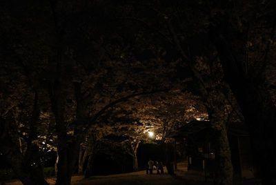 AZUMINO_20120501_5.JPG