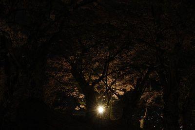 AZUMINO_20120501_6.JPG