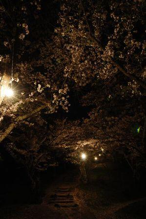 AZUMINO_20120501_7.JPG