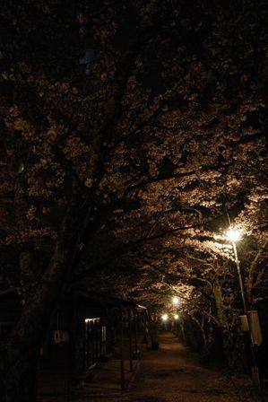 AZUMINO_20120501_8.JPG